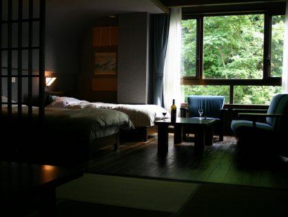 新潟|松之山温泉 山の森のホテル ふくずみ