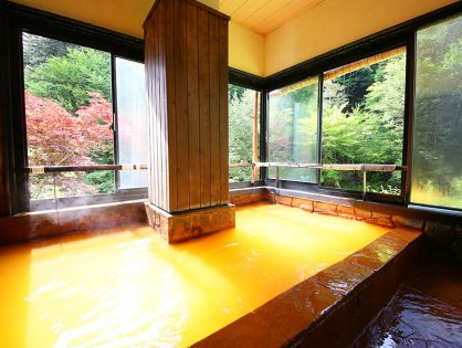 長野|奥蓼科 山の宿 明治温泉