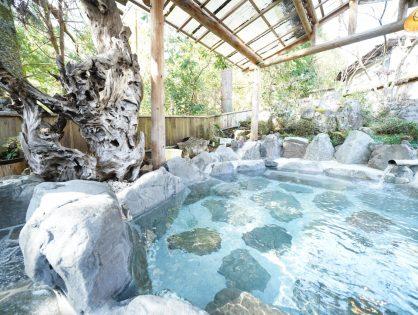 静岡|梅ヶ島コンヤ温泉 大野木荘